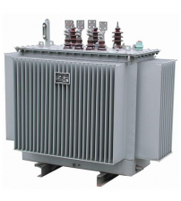 Astor 100KVA 11/0.415KV Distribution Transformer